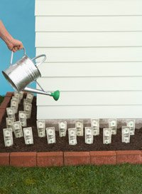 savings challenge invest in yourself watering dollar bills in garden