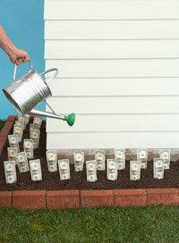 savings challenge invest in yourself watering dollar bills in garden