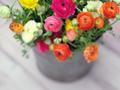 Cubeta con flores