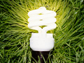 Compact fluorescent light bulb in grass 99 Ways to Save-18 Ways to Cut Utilities Costs
