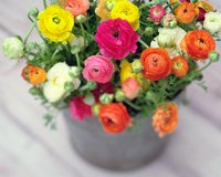 bucket of flowers-99 ways to save money with AARP discounts