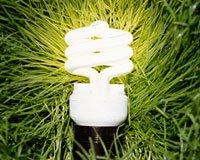 Luz compacta fluorescente sobre la hierba