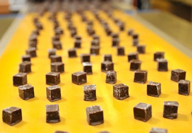 Chocolate factory tour, 13 Fabulous Freebies