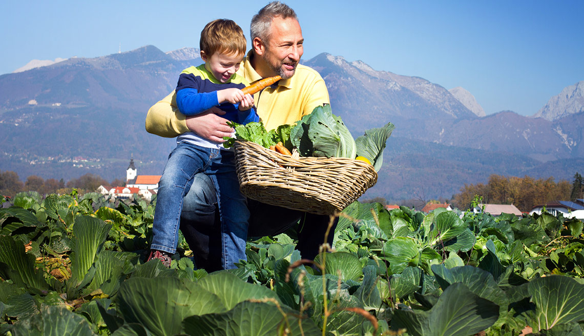 End of  Summer Deals - pick-your-own farm