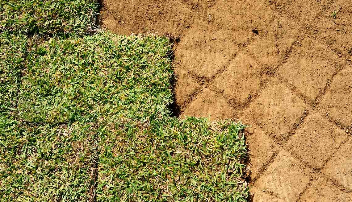 Outdoor DIY Fixes for Your Home - Reseed and patch the lawn
