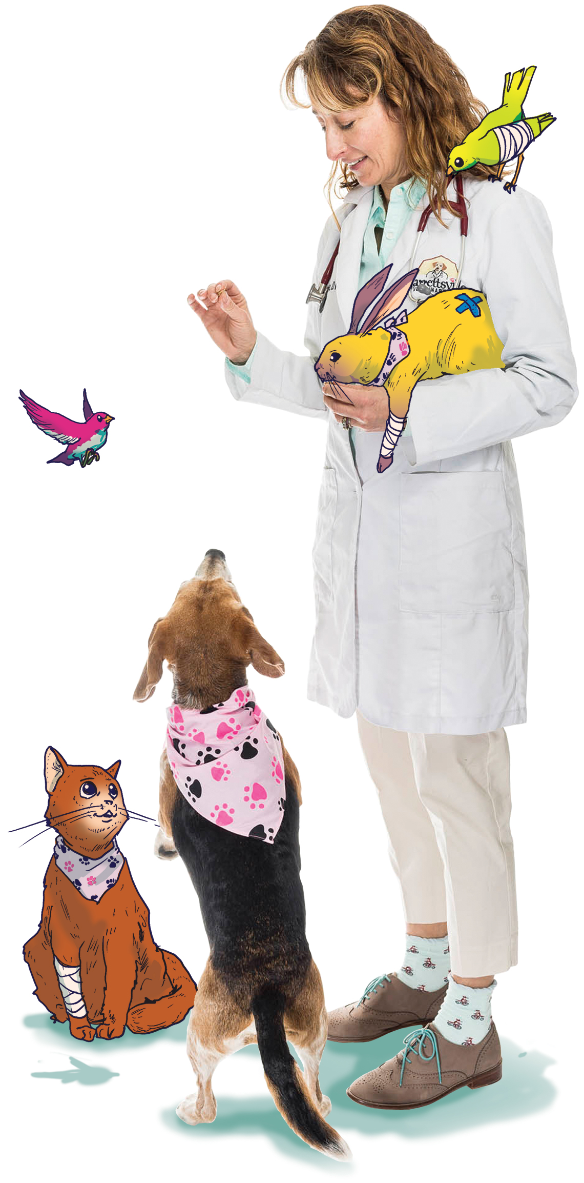 vet cares for pets
