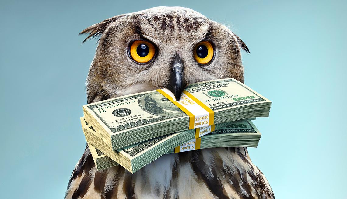 Búho sosteniendo dos fajos de dólares