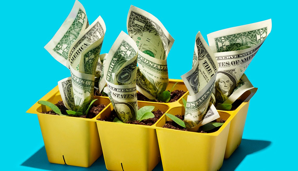 plant holder growing money