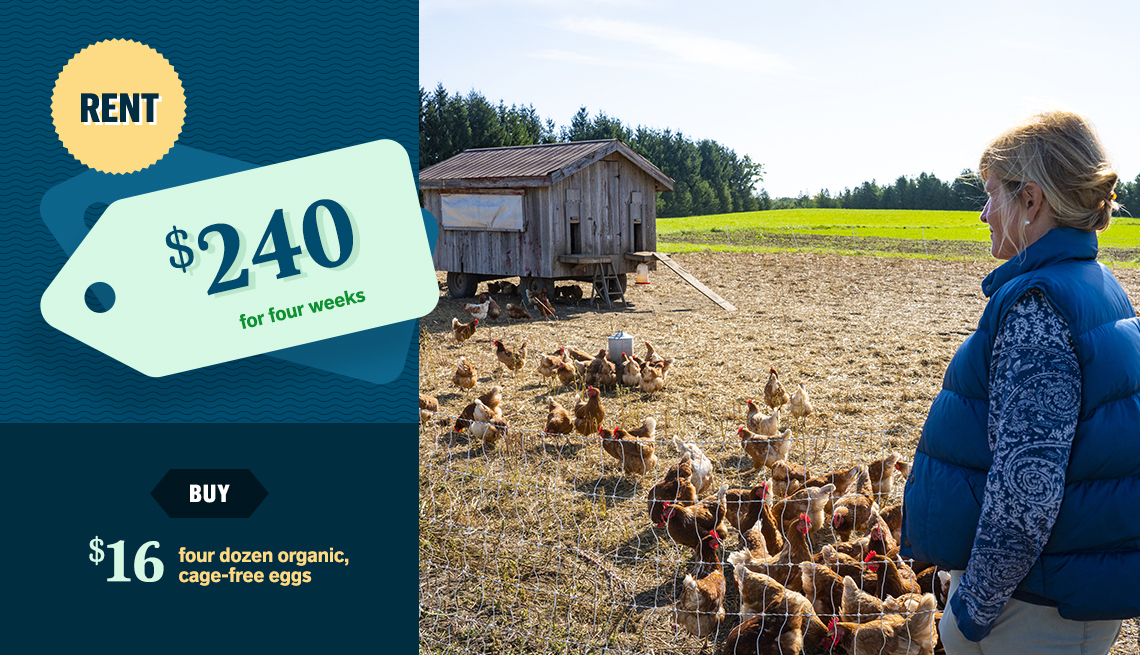item 5 of Gallery image - woman standing near chicken coop