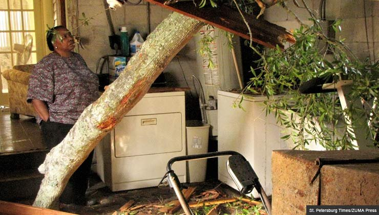 5 Uncommon Home Insurance Claims Insurance Policy Homeowner