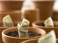 Materas con billetes de dolar simbolizan cómo invertir en bonos y hacer crecer su dinero