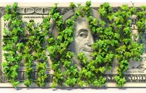 State-owed money