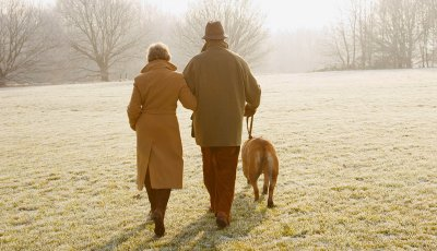 Marriage Bliss - couple walking dog