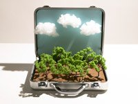 Ways to save on travel expenses - illustration of a forest inside a suitcase
