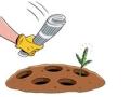 Jardineria - 8 Consejos para ahorrar dinero en su jardín
