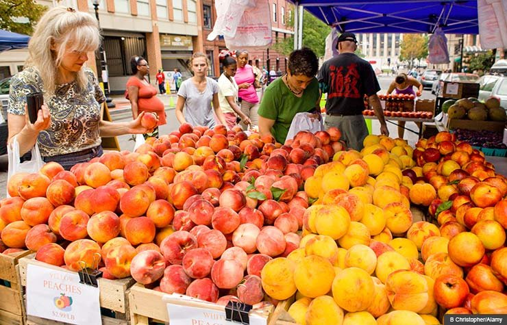 Shopping at the farmers market can save you money and give you access to great local food sources.