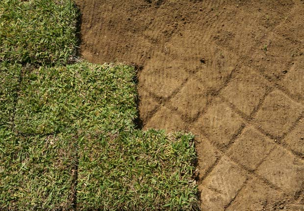 Patch up your lawn.  $100 or less DIY home fixes. (Getty Images)