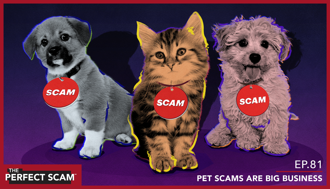Episode 81 - Pet Scams are Big Business - org