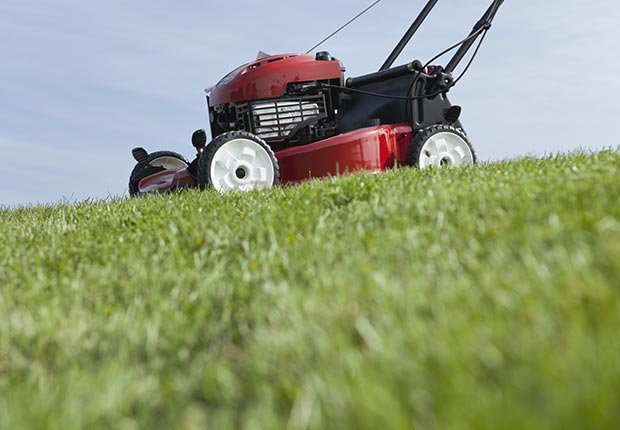 Red lawn mower on green grass