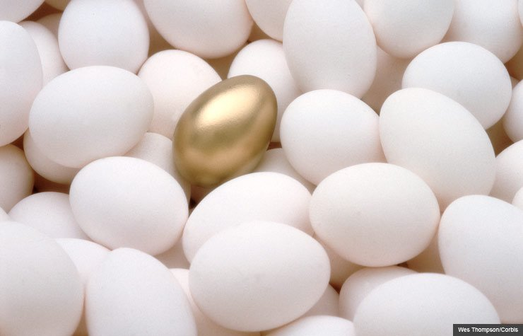 Choice of golden egg among many plain white eggs, Jane Bryant Quinn article on investing in annuities (Wes Thompson/Corbis)