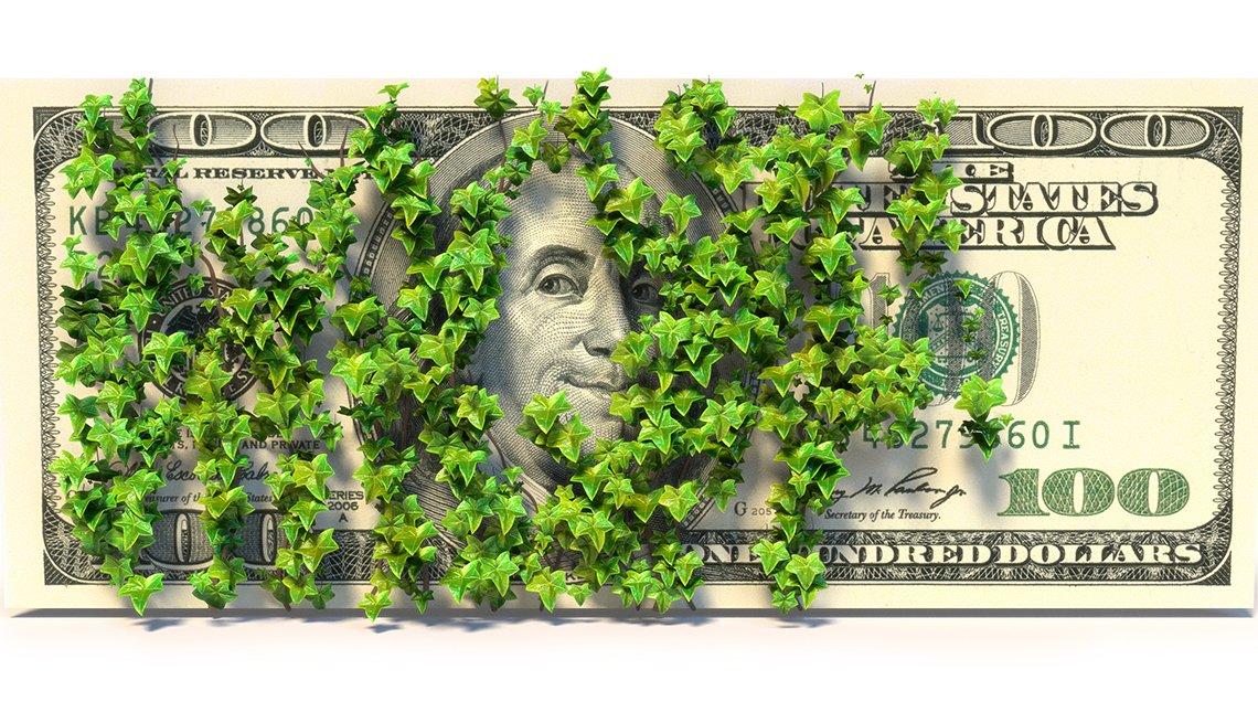 Billete de $100 cubierto de hiedra y quizás el dinero que no has reclamado