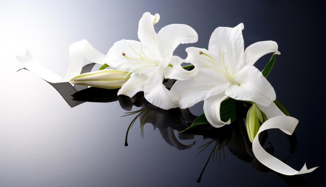 Beautiful lily, Scam Alert: Funeral Scams