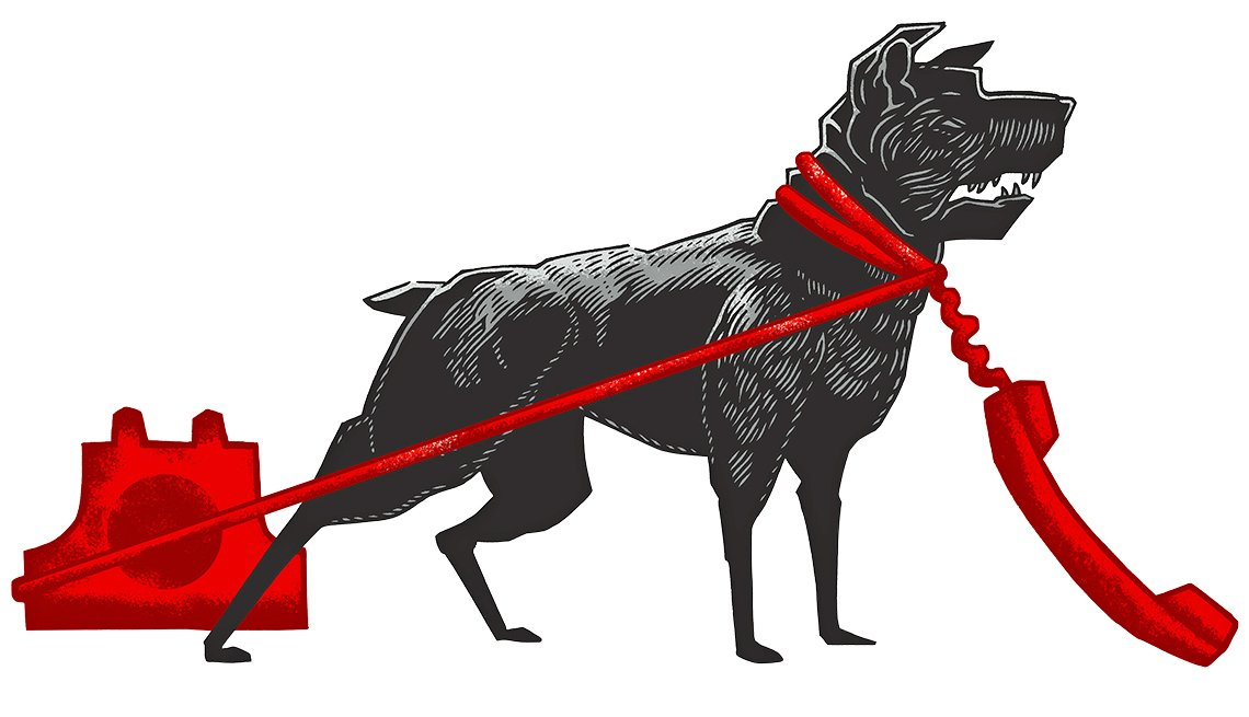 Ilustración de un perro negro con un cordón de un teléfono rojo que le da la vuelta por el cuelllo, para que combatas el fraude