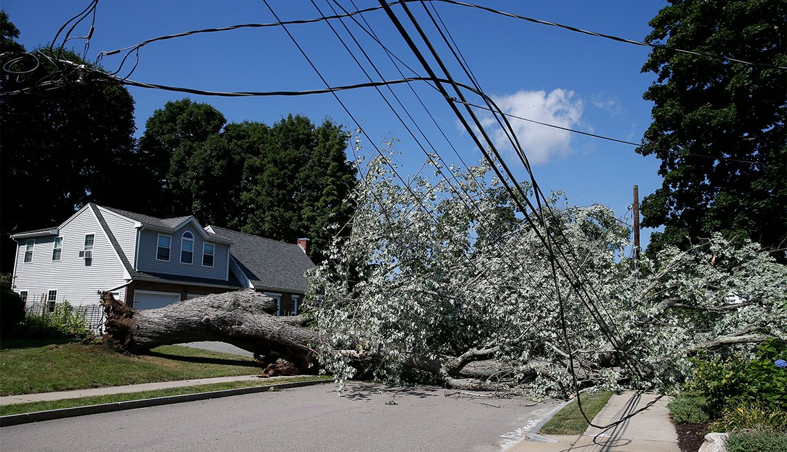 A tree which brought down power lines lies in the street in Waltham, MA on Aug. 5, 2020, a day after Tropical Storm Isaias sent heavy winds through the area