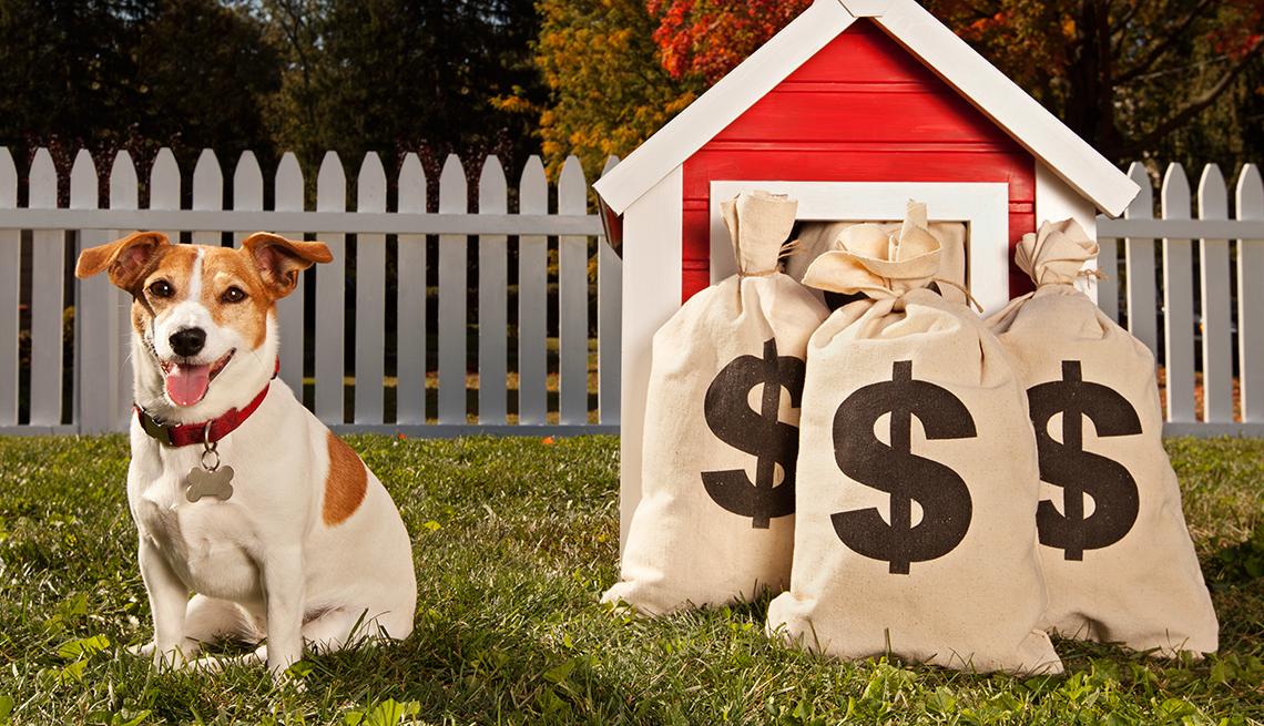 Perro al lado de su casa con bolsas de dinero al frente.