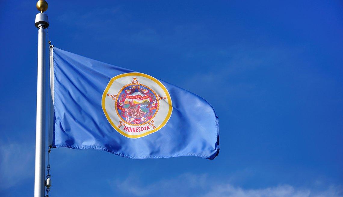 Minnesota State Flag Against a Blue Sky