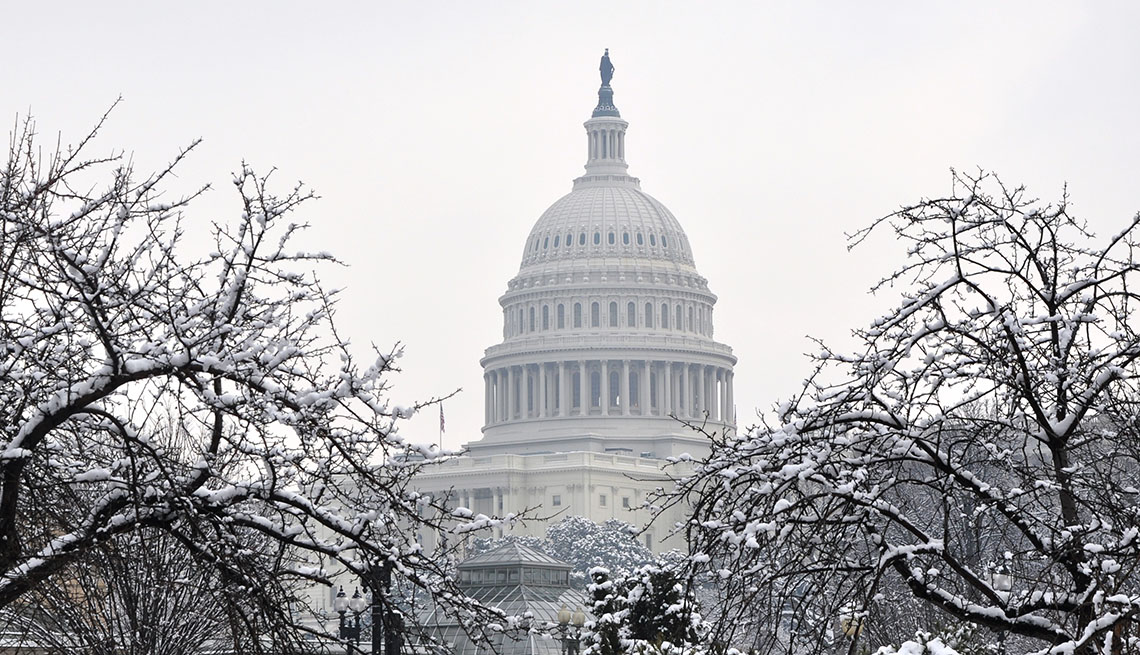 The winter Capitol in an environment of snow-covered trees.