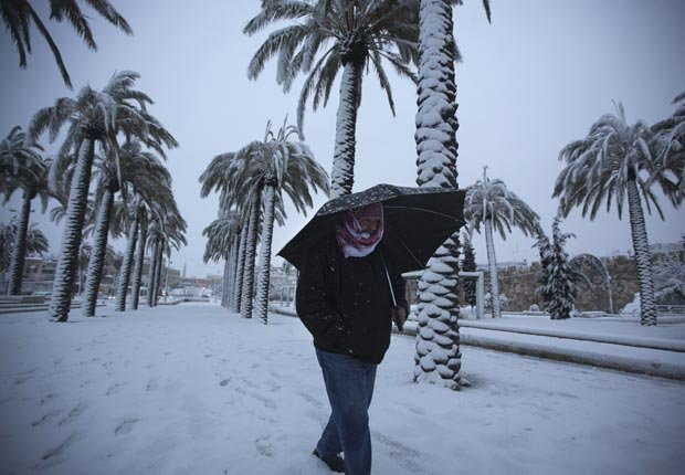 A man walks near palm trees as snow falls, 10 effects of climate change