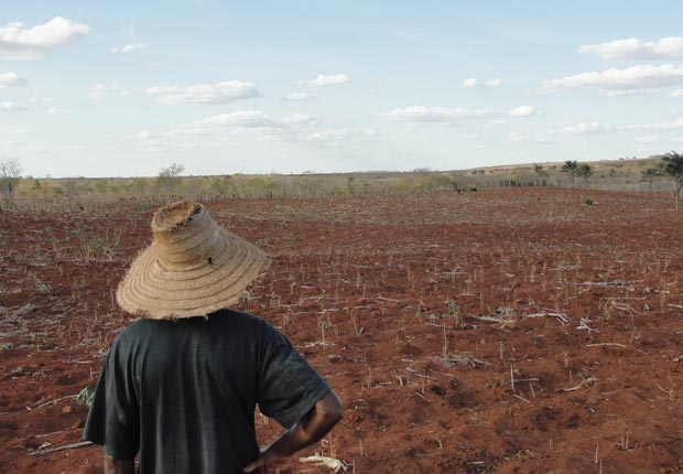 Farmer looks over drought-ridden crop site, 10 effects of climate change