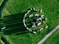 Stonehenge Discovery of Full Circle