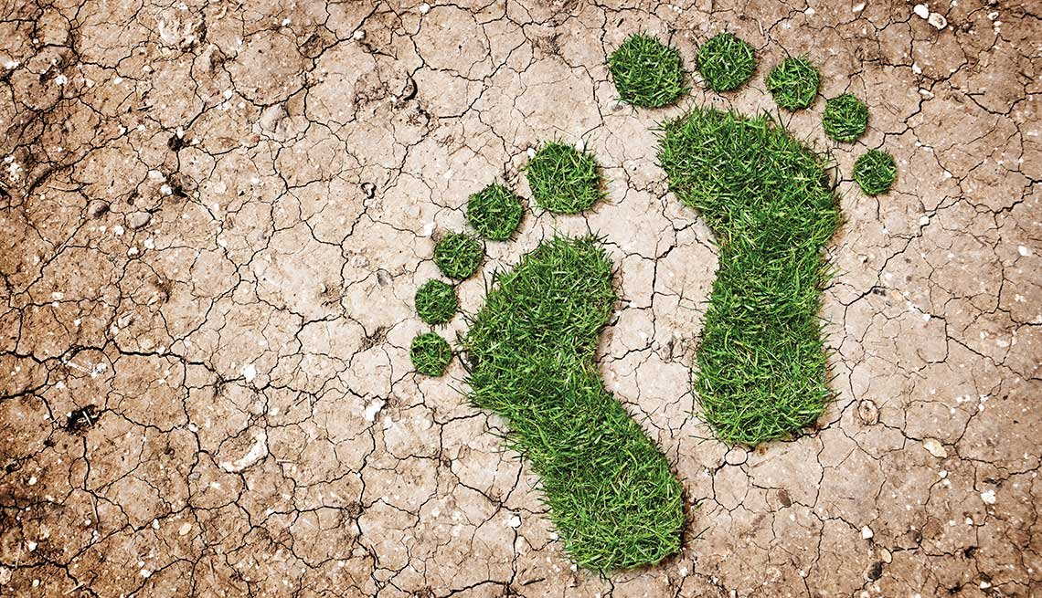 Green footprint, Trivia Quiz, Environment