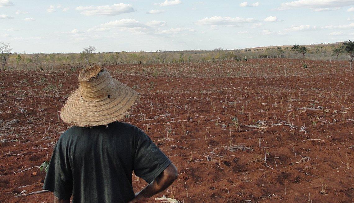 Agricultor mirando su tierra