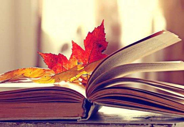 Libro y ojas otoñales