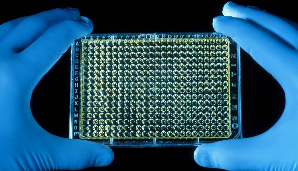 Manos sosteniendo una bandeja con parte del genoma humano
