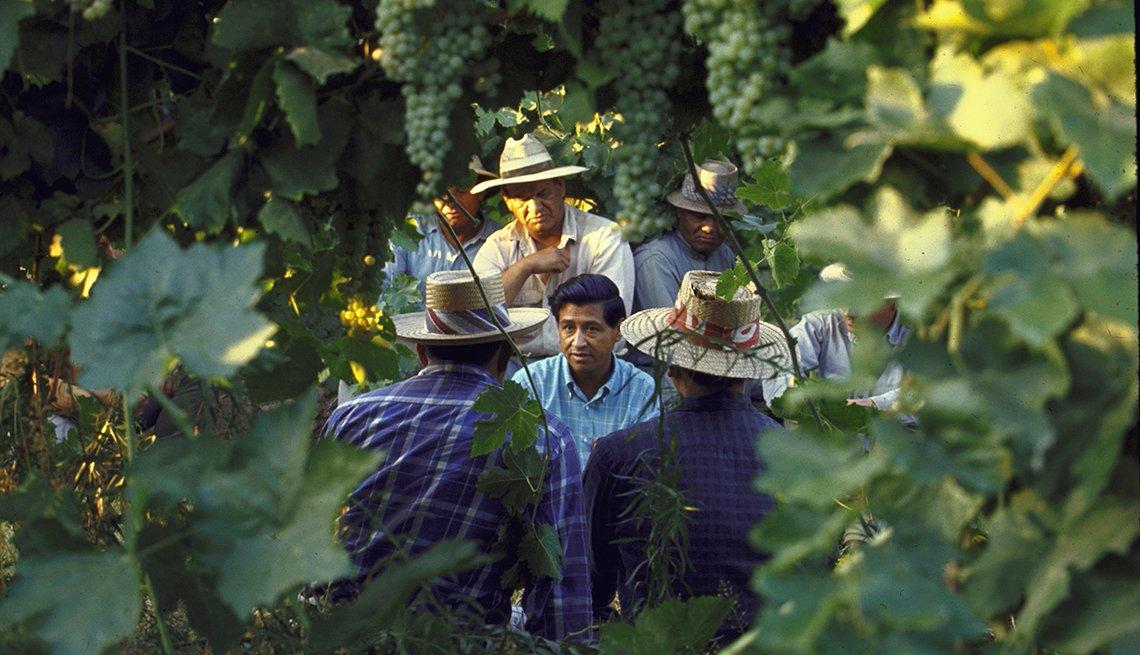César Chávez habla con recolectores