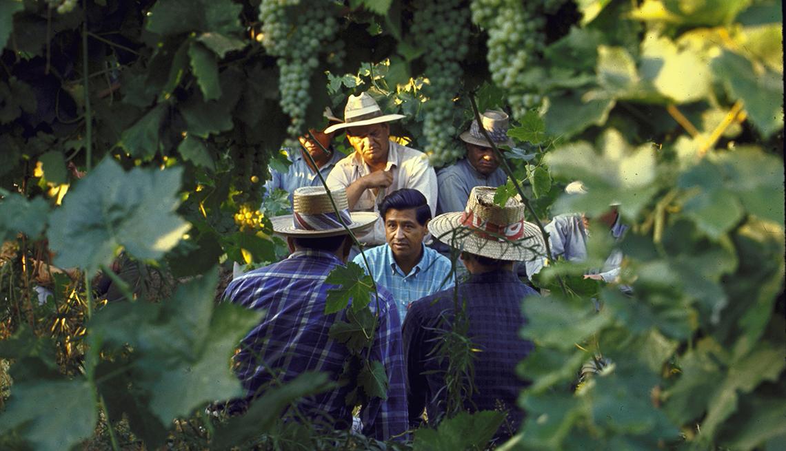 item 3 of Gallery image - César Chávez habla con recolectores