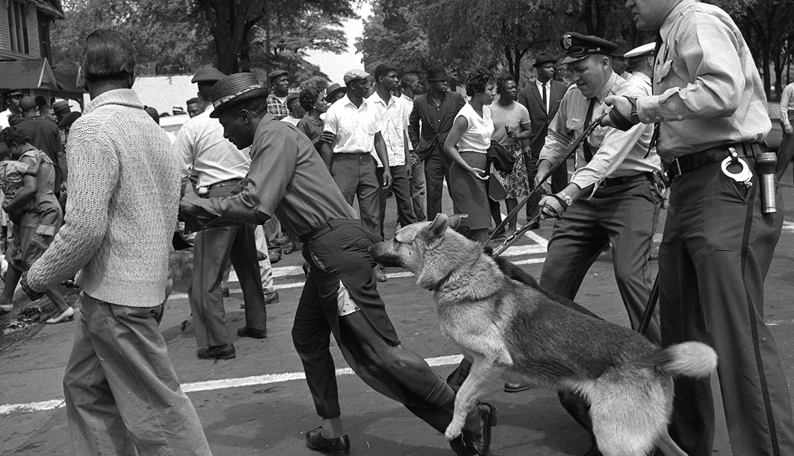 police dogs jump at a man with torn pants during a demonstration in birmingham, alabama