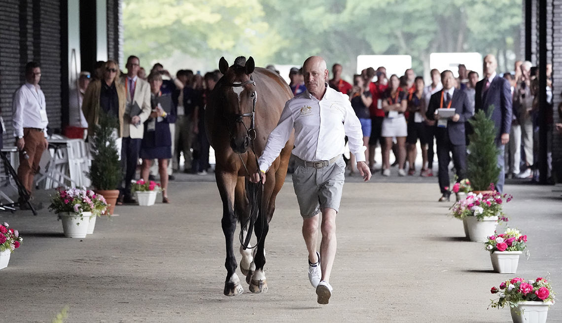 item 2 of Gallery image - olympic equestrian andrew hoy of australia