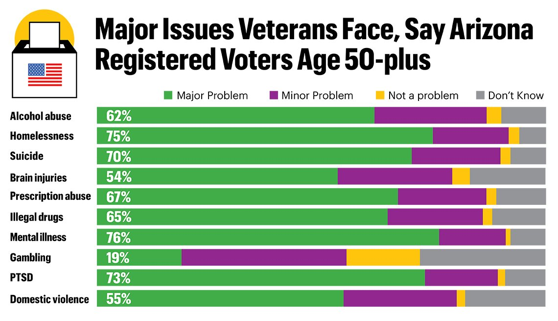 Major Issues Veterans Face, Say Arizona Registered Voters Age 50 Plus graphic