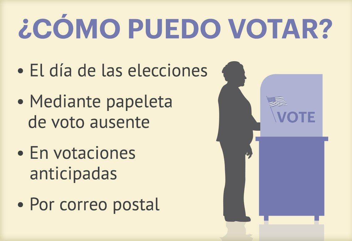 Gráfica muestra cómo una persona puede votar
