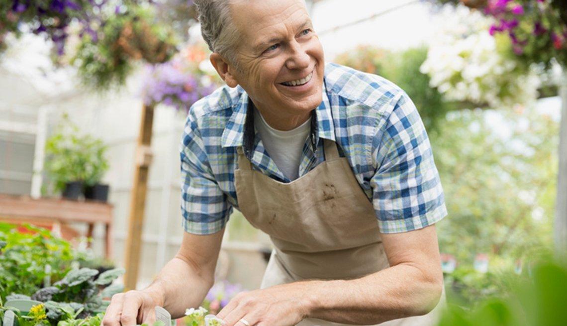 A man gardening in a nursery greenhouse