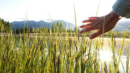 A woman's hand grazes the tops of long grasses near a mountain lake.