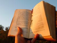 Hombre leyendo la Biblia - ¿Qué tan bien conoce la Biblia?