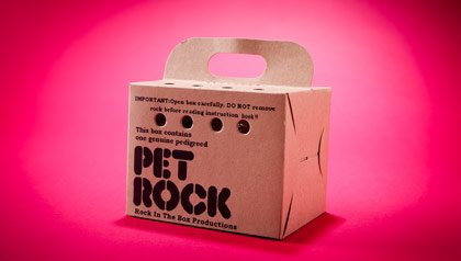 Memorabilia the baby boomer loves - a Pet Rock