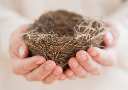 Hombre sosteniendo un nido vacio en sus manos