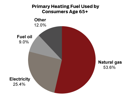 Primary Heating Fuel Used by Consumers Age 65+